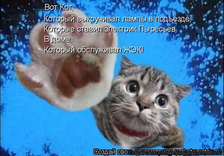 Котоматрица: ...Вот Кот,  Который выкручивал лампы в подъезде, Которые ставил электрик Пыресьев В доме, Который обслуживал ЖЭК!