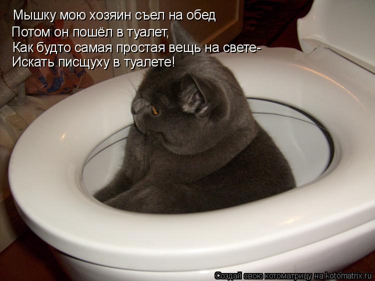 к чему снится что мать ходит в туалет оборудованное