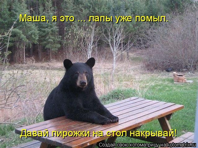 Че только не вытворяют эти косолапые медведи.