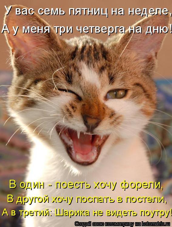 Котоматрица: В другой хочу поспать в постели, А в третий: Шарика не видеть поутру!  В один - поесть хочу форели, У вас семь пятниц на неделе,  А у меня три чет