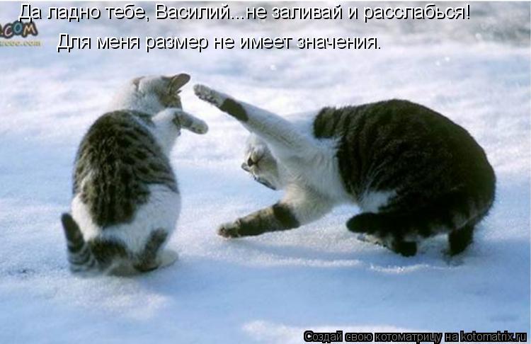 Котоматрица: Да ладно тебе, Василий...не заливай и расслабься! Для меня размер не имеет значения.