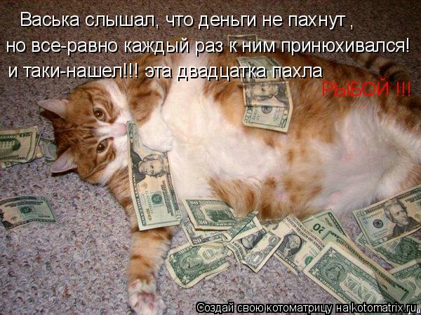 Котоматрица: Васька слышал, что деньги не пахнут , но все-равно каждый раз к ним принюхивался! и таки-нашел!!! эта двадцатка пахла РЫБОЙ !!!