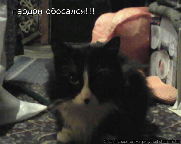 Котоматрица: пардон обосался!!!