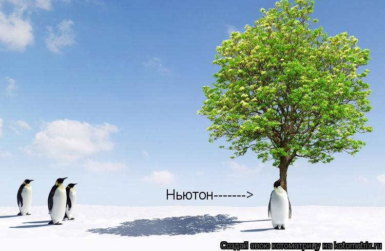 Котоматрица: Ньютон------->