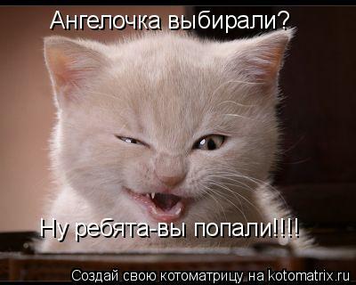 http://kotomatrix.ru/images/lolz/2011/06/03/921908.jpg