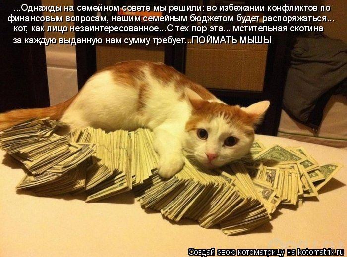 http://kotomatrix.ru/images/lolz/2011/06/03/921947.jpg