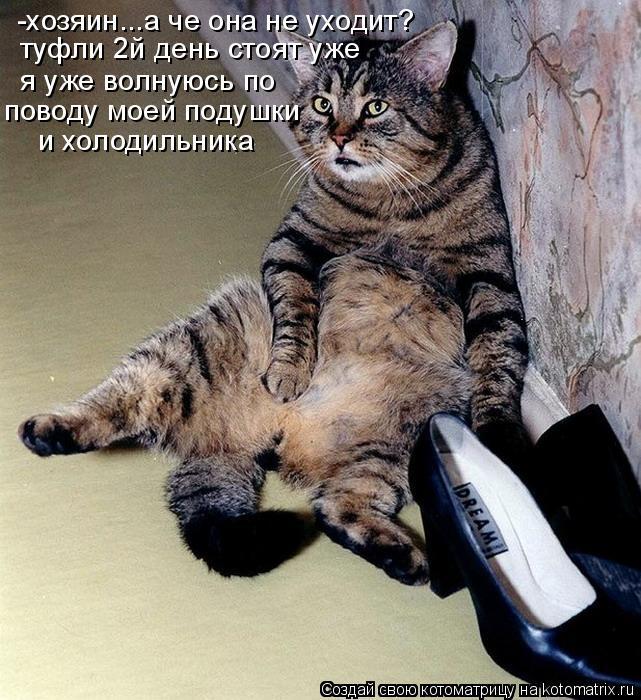 Котоматрица: -хозяин...а че она не уходит? туфли 2й день стоят уже я уже волнуюсь по  поводу моей подушки и холодильника