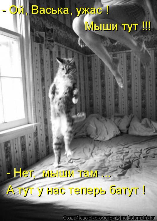 Котоматрица - - Ой, Васька, ужас ! Мыши тут !!! - Нет,  мыши там ... А тут у нас теп