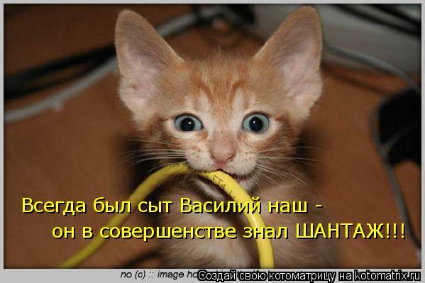 Котоматрица: Всегда был сыт Василий наш -  он в совершенстве знал ШАНТАЖ!!!