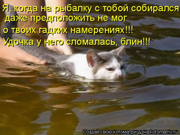 Котоматрица - Я, когда на рыбалку с тобой собирался,  даже предположить не мог  о тв
