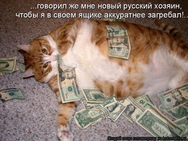 Котоматрица: ...говорил же мне новый русский хозяин,  чтобы я в своем ящике аккуратнее загребал!..