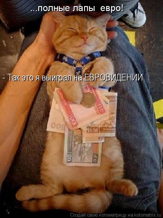 Котоматрица: ...полные лапы  евро! - Так это я выиграл на ЕВРОВИДЕНИИ