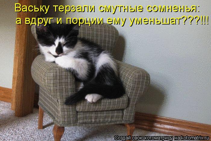 Котоматрица - Ваську терзали смутные сомненья: а вдруг и порции ему уменьшат???!!!