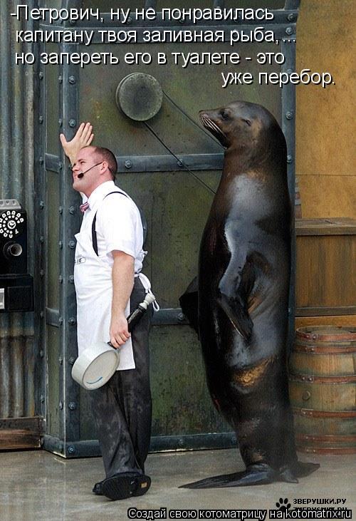 Котоматрица: -Петрович, ну не понравилась  капитану твоя заливная рыба, но запереть его в туалете - это уже перебор. ...