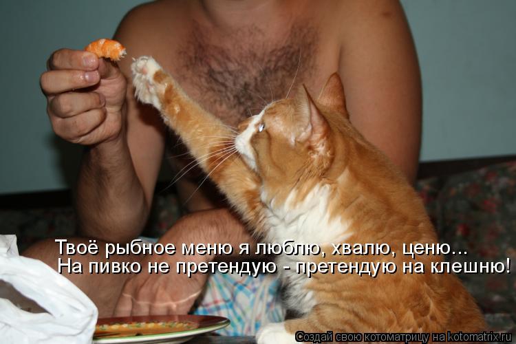 Котоматрица - Твоё рыбное меню я люблю, хвалю, ценю... На пивко не претендую - прете