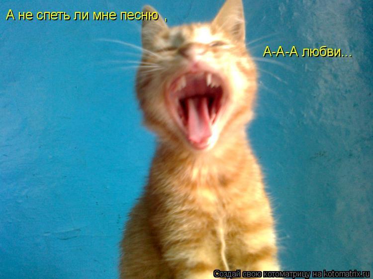 Котоматрица: А не спеть ли мне песню  А-А-А любви... ,