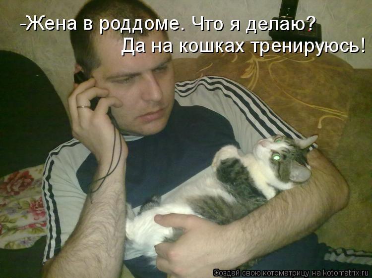 Котоматриця!)))) - Страница 5 925343