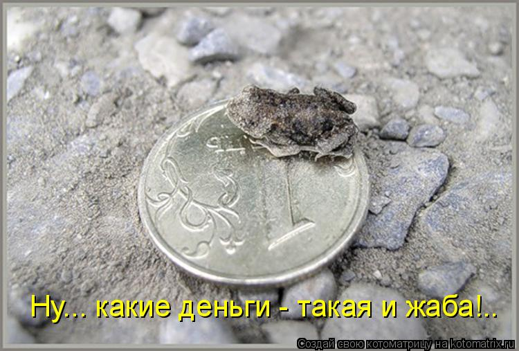 http://kotomatrix.ru/images/lolz/2011/06/08/925368.jpg