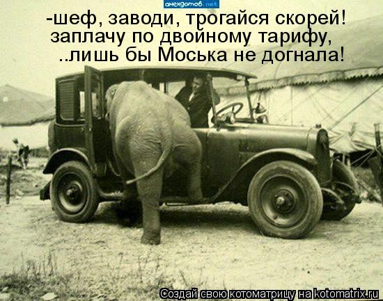 http://kotomatrix.ru/images/lolz/2011/06/08/925639.jpg