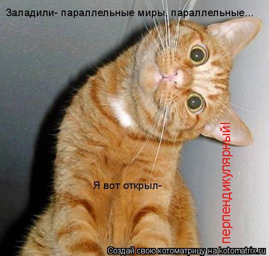 Котоматрица: Заладили- параллельные миры, параллельные... Я вот открыл- перпендикулярный!
