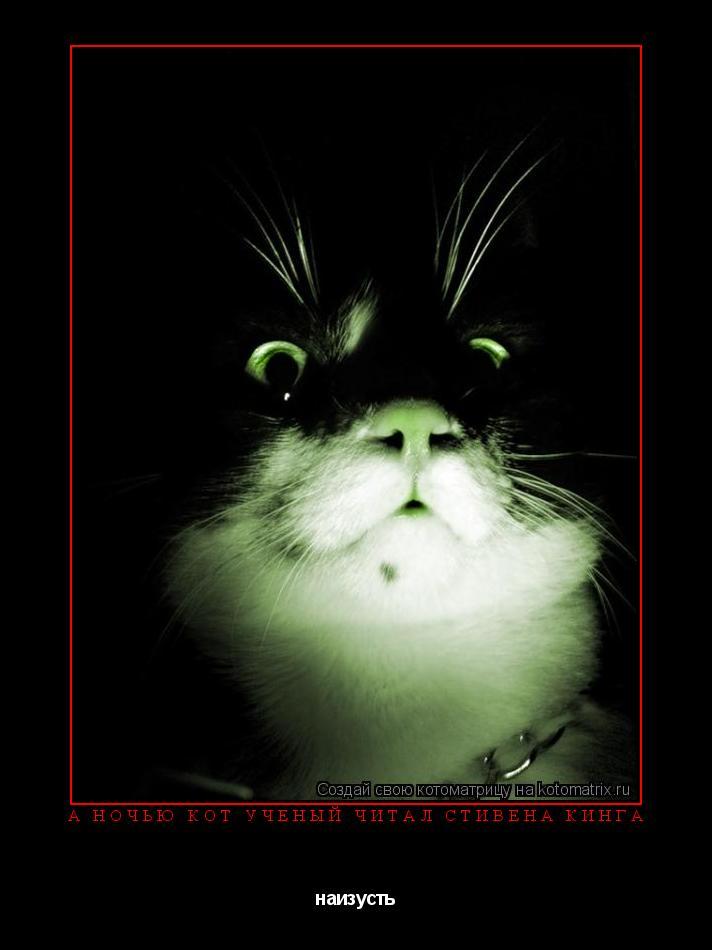 Котоматрица: А ночью кот ученый читал Стивена Кинга наизусть