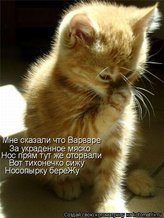 http://kotomatrix.ru/images/lolz/2011/06/10/926907.jpg