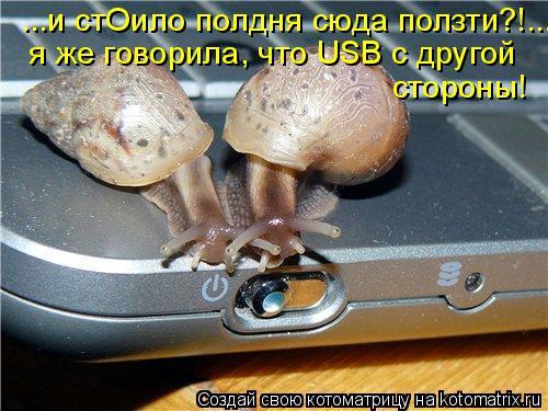 Котоматрица: ...и стОило полдня сюда ползти?!... я же говорила, что USB c другой стороны!