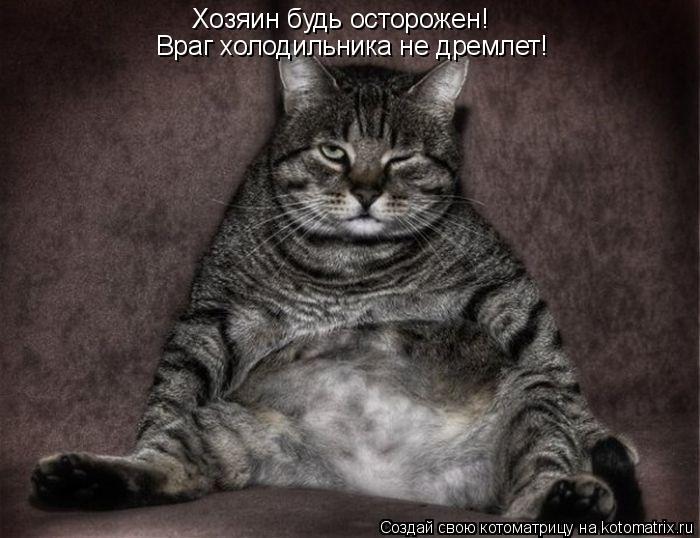 Котоматрица: Враг холодильника не дремлет! Хозяин будь осторожен!