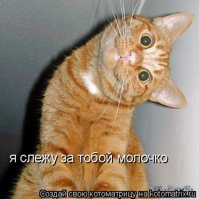 я наблюдаю за тобой фото дрожжи СССР смесь