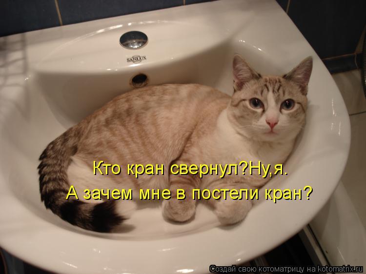 Котоматрица - Кто кран свернул?Ну,я. А зачем мне в постели кран?