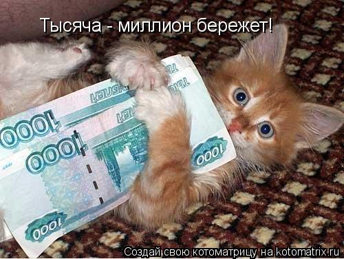 Котоматрица: Тысяча - миллион бережет!