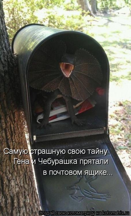 Котоматрица: Самую страшную свою тайну Гена и Чебурашка прятали в почтовом ящике...