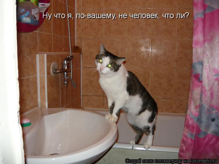 Котоматрица: Ну что я, по-вашему, не человек, что ли?