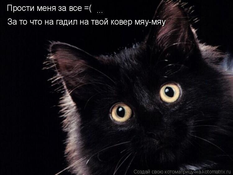 смайлик прости:
