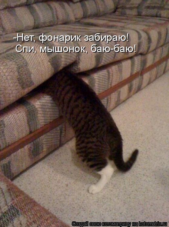 Котоматрица: -Нет, фонарик забираю! Спи, мышонок, баю-баю!