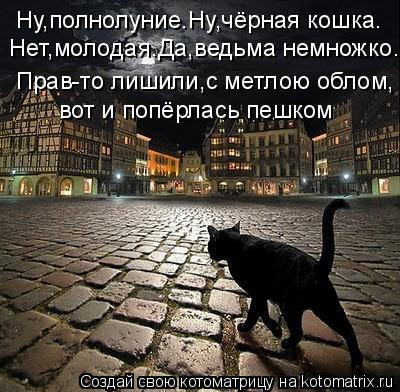 Котоматрица: Ну,полнолуние.Ну,чёрная кошка.  вот и попёрлась пешком Прав-то лишили,с метлою облом, Нет,молодая.Да,ведьма немножко.