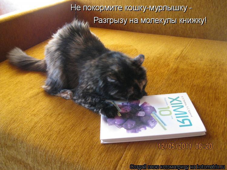 Котоматрица: Не покормите кошку-мурлышку - Разгрызу на молекулы книжку!