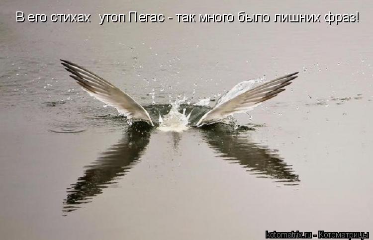http://kotomatrix.ru/images/lolz/2011/06/13/929356.jpg