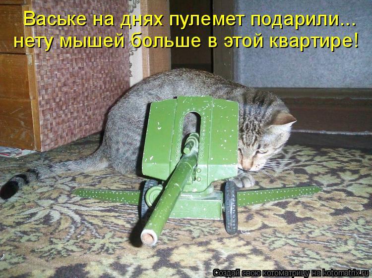 Котоматрица - Ваське на днях пулемет подарили... нету мышей больше в этой квартире!