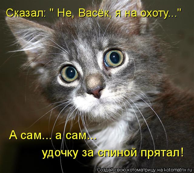Котоматрица - Сказал: