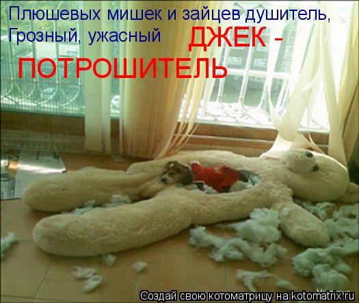 Котоматрица: Плюшевых мишек и зайцев душитель, Грозный, ужасный  ДЖЕК - ПОТРОШИТЕЛЬ