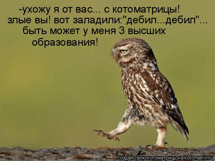 Котоматриця!)))) - Страница 7 930786