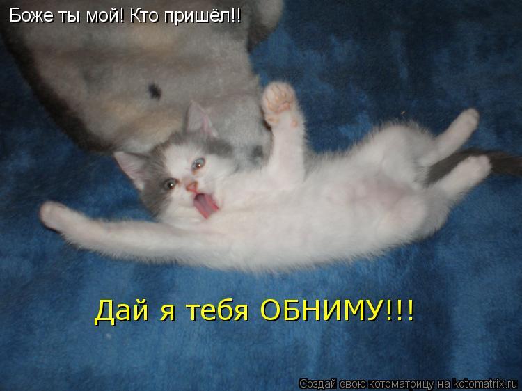 Котоматрица: Боже ты мой! Кто пришёл!! Дай я тебя ОБНИМУ!!!