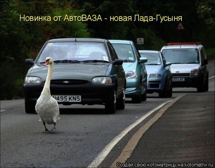 Котоматрица: Новинка от АвтоВАЗА - новая Лада-Гусыня