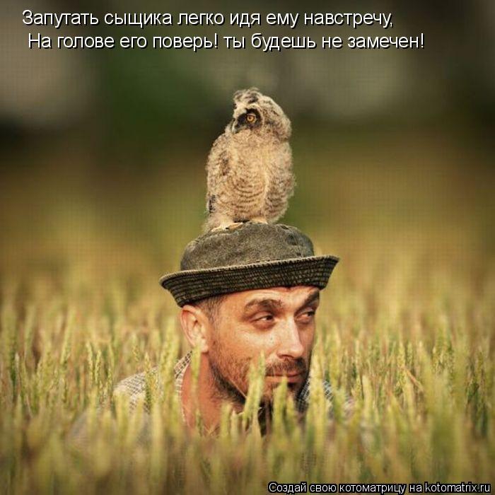 Котоматрица: Запутать сыщика легко идя ему навстречу, На голове его поверь! ты будешь не замечен!