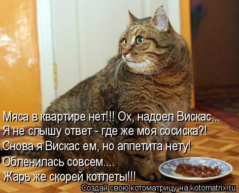 Котоматрица: Мяса в квартире нет!!! Ох, надоел Вискас..… Я не слышу ответ - где же моя сосиска?! Снова я Вискас ем, но аппетита нету! Обленилась совсем…...  Жа