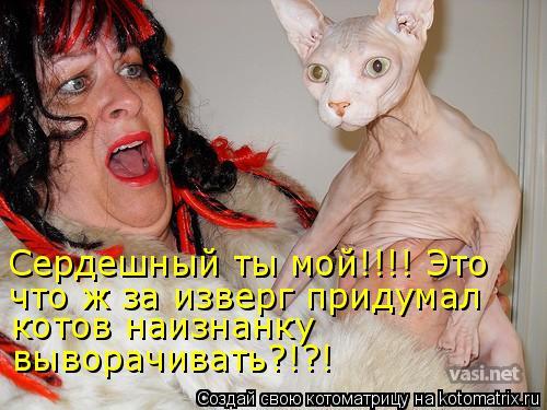 Котоматрица - Сердешный ты мой!!!! Это  что ж за изверг придумал котов наизнанку  вы