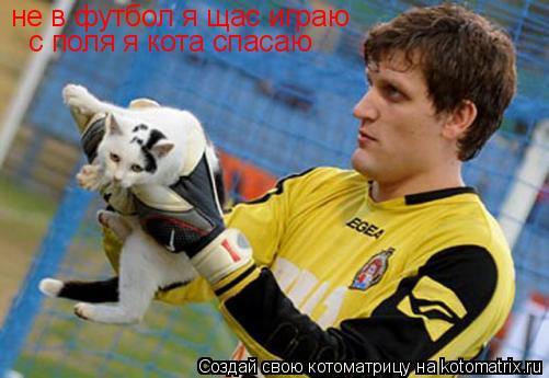 Котоматрица: не в футбол я щас играю  с поля я кота спасаю