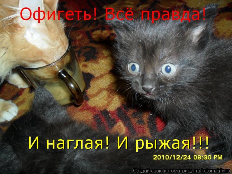 http://kotomatrix.ru/images/lolz/2011/06/19/933822.jpg