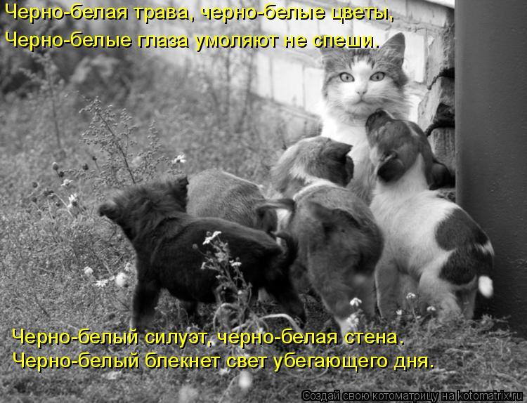 смайлик черно белый: